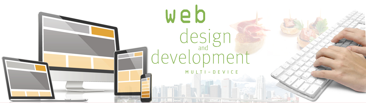 Web Development and Designing service in surat - techiflyer